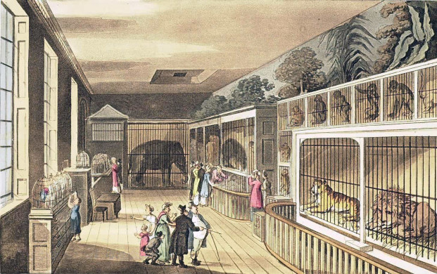 The Exeter Exchange menagerie in London, England, c.1820.