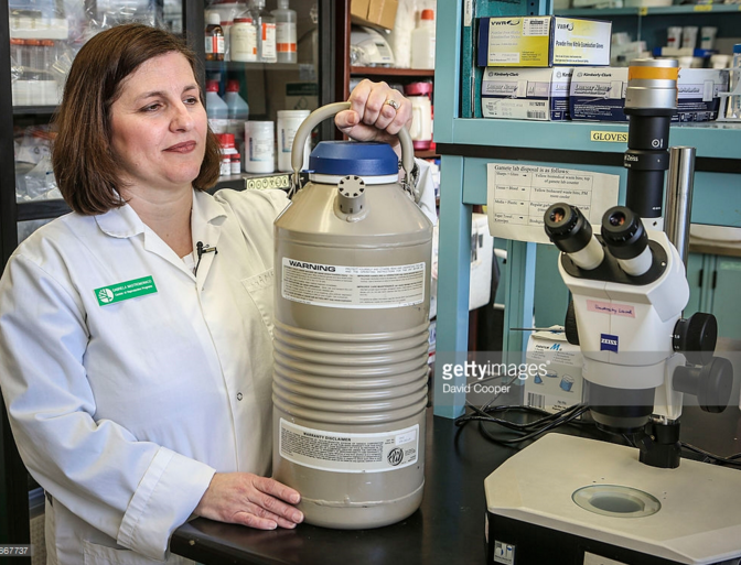 Gabriela Mastromonaco is the Curator of Reproductive Programs at the Toronto Zoo seen here in her lab with a liquid nitrogen 'dry shipper' which is basically a huge thermos used to transport frozen material January 9, 2014.