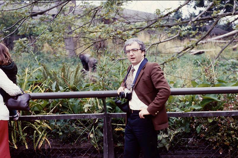 woodland-park-gorilla